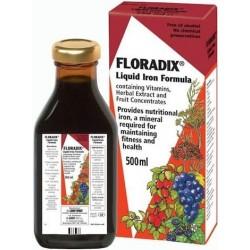 Floradix tonico 250 ml Salus