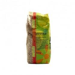 Avena grano bio 500gr Biospirit