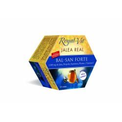 JALEA REAL BAL-SAN FORTE 1000 mg 20amp DIETISA