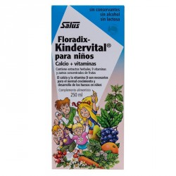 Floradix Kindervital fruity niños 250 ml Salus