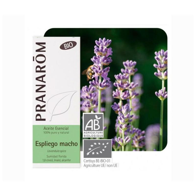 Aceite esencial Espliego macho Bio 10 ml Pranarom