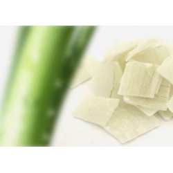 Aloe vera en trozos con azucar 1kg Itac